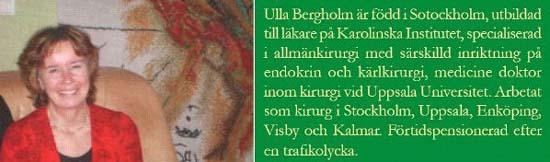 Klicka på bilden får du information hur du beställer boken Ut ur dimman av Ulla Bergholm.